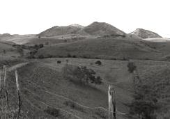 Foto in bianco e nero di un paesaggio collinare a Joaquim Gomes