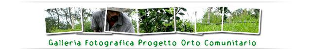 Galleria Fotografica Progetto Orto Comunitario